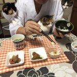 住職の朝ごはん。三位一体の朝食チェック。 pic.twitter.com/qnXMrrBdgA