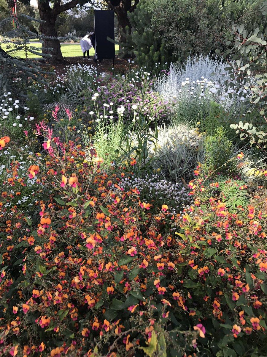 Enjoying a few hours @kingspark_wa Looking stunning as usual #botanicgarden #BGANZ #westernAustralia <br>http://pic.twitter.com/HORLRX0OiJ