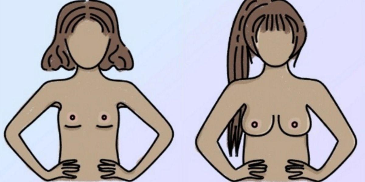 When do boobs stop growing