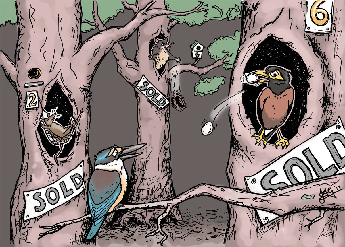 &quot;The other housing crisis&quot; #predatorfreeNZ #ecology #conservation #InvasiveSpecies<br>http://pic.twitter.com/IazCBxCQBd