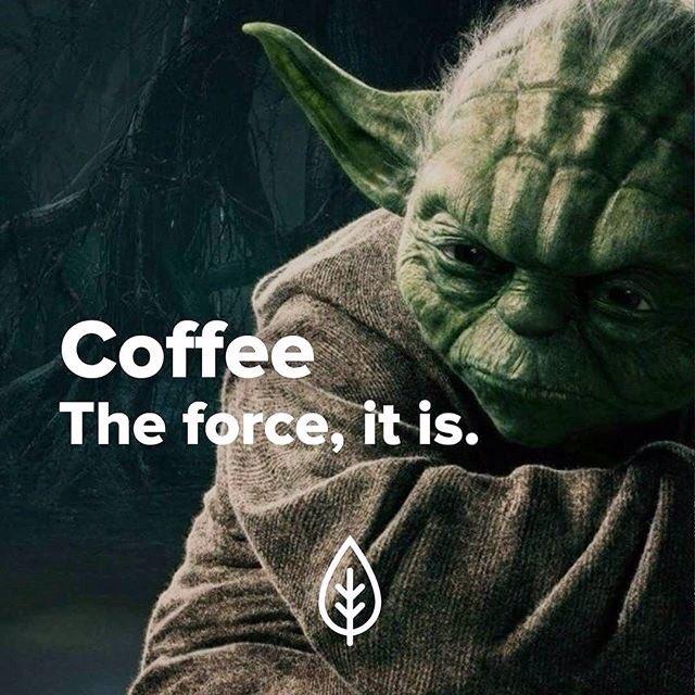 #TuesdayThoughts If ALL else fails #Coffee #beSafe @Angelab0424 @hecklerkaneinc @liliantjen @KMFras @AuStar3d @noklew_ @sweetishj @FranRN<br>http://pic.twitter.com/iH53jUwfhm