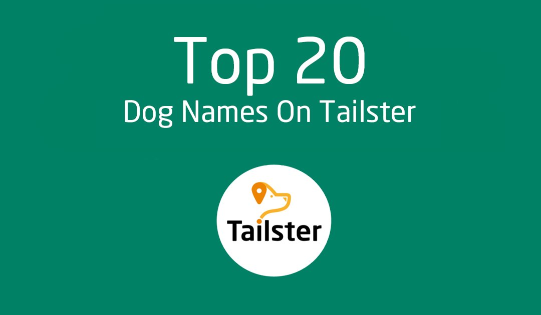 Tailster On Twitter We Put Together The Top 20 Dog Names On