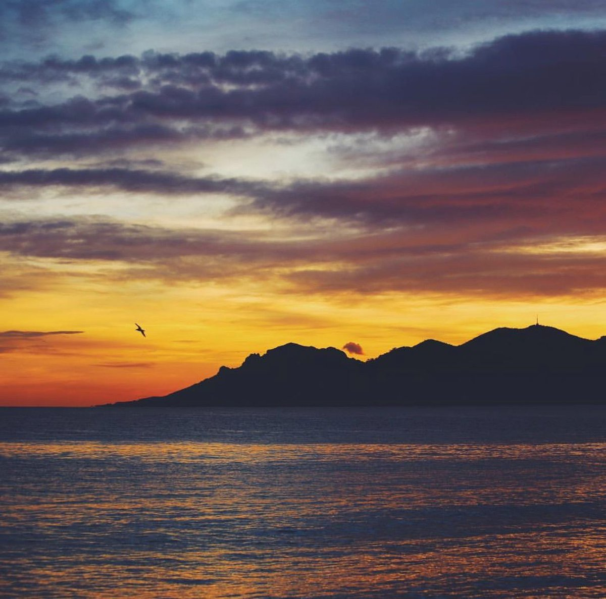September nights in #Cannes   benricardphotography <br>http://pic.twitter.com/A5wLUJuWAe