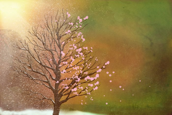 New #artwork #forsale It&#39;s part 3 of my 4 #seasons. This one is #winter to #spring.  @fineartamerica  https:// buff.ly/2wEmdYE  &nbsp;  <br>http://pic.twitter.com/7bBcx5Fx2x