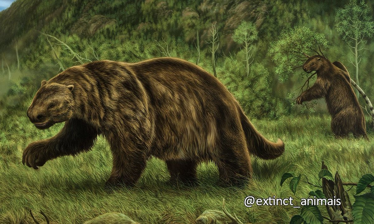 giant animals north america - HD1920×833