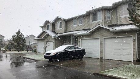 Nooo!: Edmonton gets first snowfall of the season https://t.co/e6HKF8wOaw