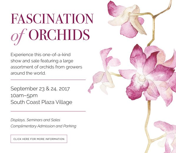 One of the best gardening events @southcoastplaza Fascination of Orchids garden show comes this weekend #costamesa #orchids #southcoastplaza<br>http://pic.twitter.com/MFRfClX45Y