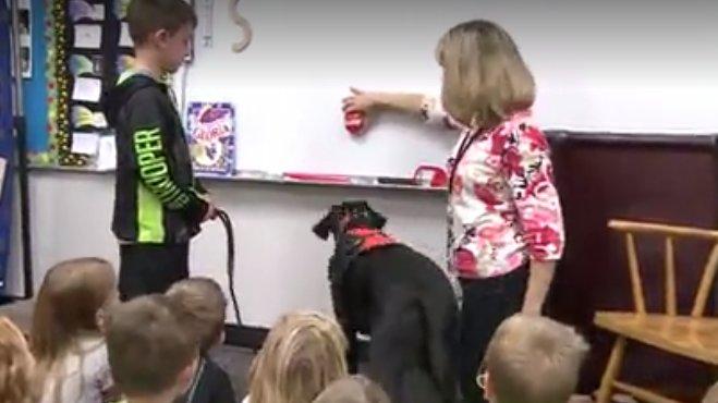 Kindergarten students help train service dog https://t.co/1S8E28vuKb