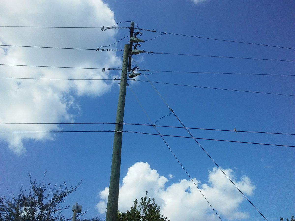 Florida Sert On Twitter Hurricane Irma Power Outage Circuit Breakers That Won39t Reset 0 Replies Retweets 1 Like