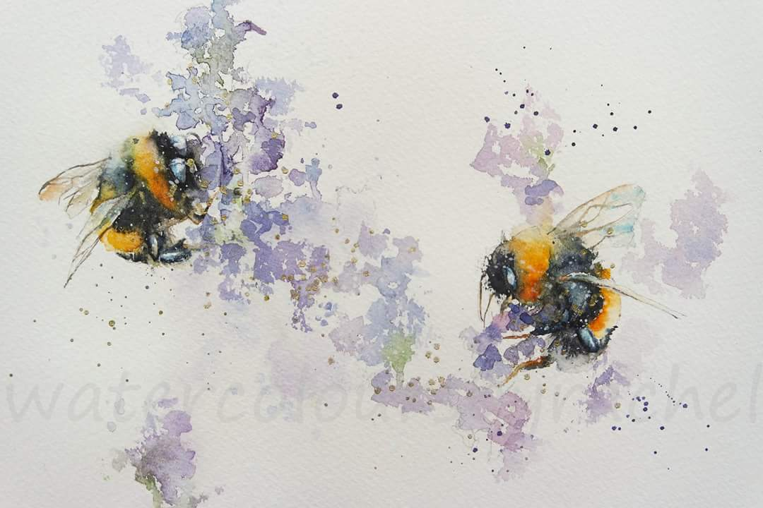 Don&#39;t worry Bee Happy  #watercolour #PaintSeptember #savethebees #wildlife #movement #BigArtBoost #bees #wildflowers #Devon #paint #artist<br>http://pic.twitter.com/4ww2jIOJGM