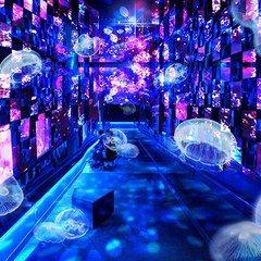 【幻想的】すみだ水族館、宮沢賢治の童話がテーマの展示開催 https://t.co/QFyxKXl9Le  写真に刺繍を施すアーティストの清川あさみ氏が展示演出を行い、天の川をイメージしたクラゲ万華鏡トンネルなどを展開。29日から。