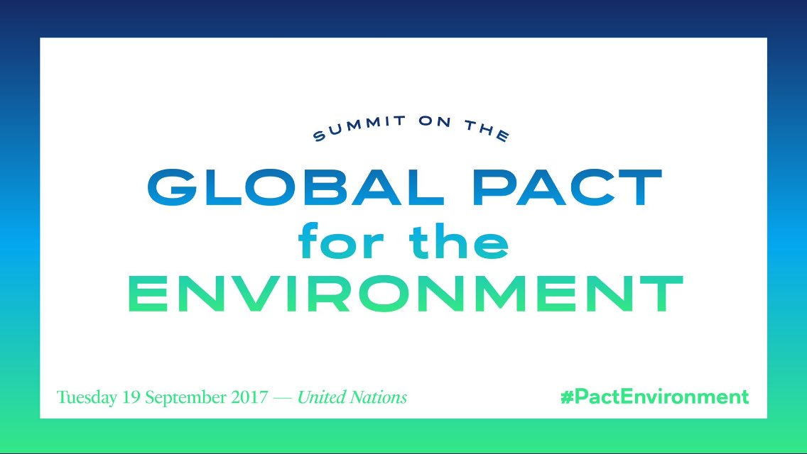 #UNGA   #France We&#39;re calling for a Global #PactEnvironment to make sure everyone in the world has the right to a sustainable future. #LREM<br>http://pic.twitter.com/MyXOjeVYOU