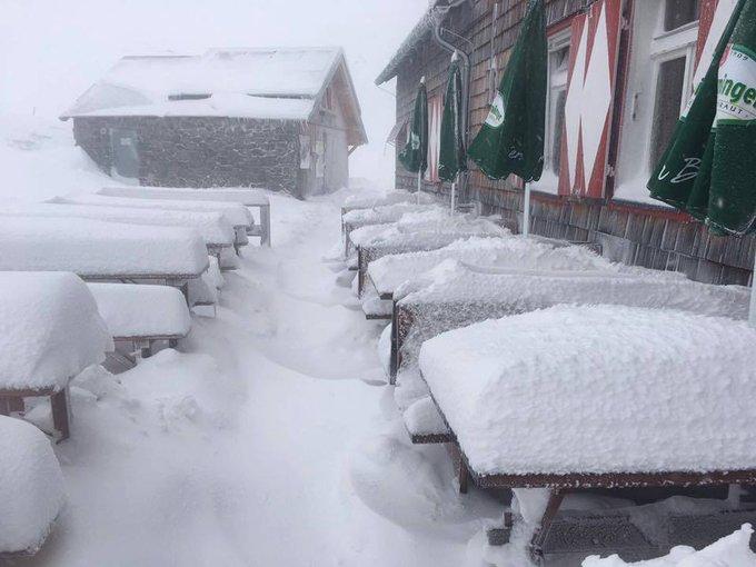 Bonita nevada está cayendo en los Alpes austriacos para despedir el verano!!! 😍❄️❄️❄️ [📸 #Hintertux #Dachstein #Schladming #Pitztal]
