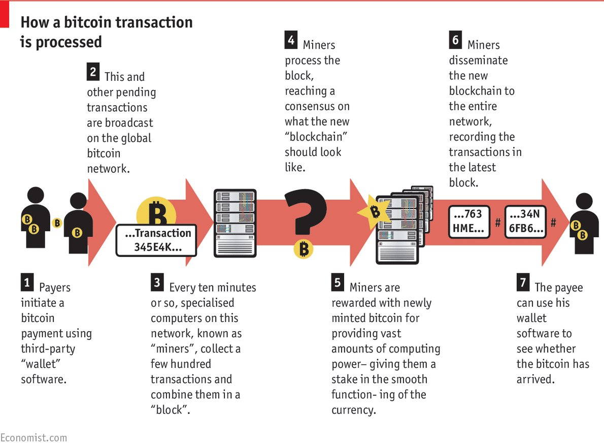 THE ECONOMIST  How a #bitcoin is processed?  #infographic #makeyourownlane #defstar5 #Mpgvip #blockchain #cryptocurrency #crypto  #fintech<br>http://pic.twitter.com/GTmxfPNQBH