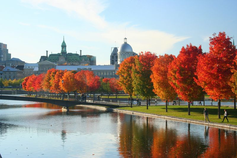 A1. #Fall in the Old Port is something to see! 📷 Martine Proulx #Canad...