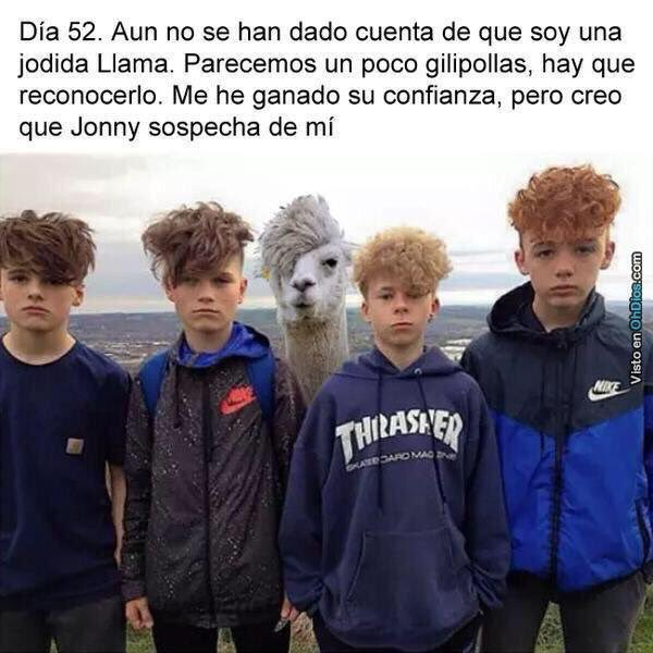 RT @iJuanma: No digas nada, sólo dale RT.😂 #KCAColombia #JuanmaSalazar https://t.co/JREoaxCEUv