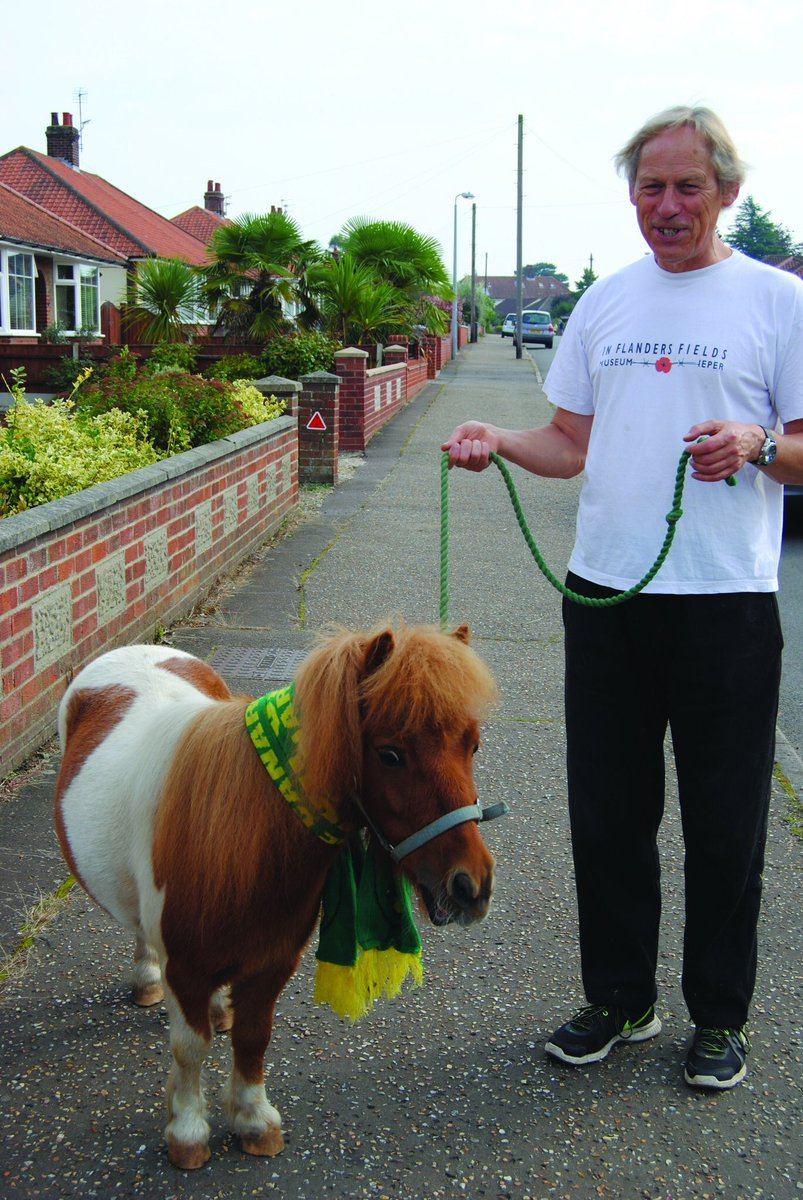 Tiny Hellesdon pony&#39;s a Canaries&#39; fan:  http:// justregional.co.uk/miniature-shet  &nbsp;  … #Ncfc <br>http://pic.twitter.com/LQg7UCsCMF