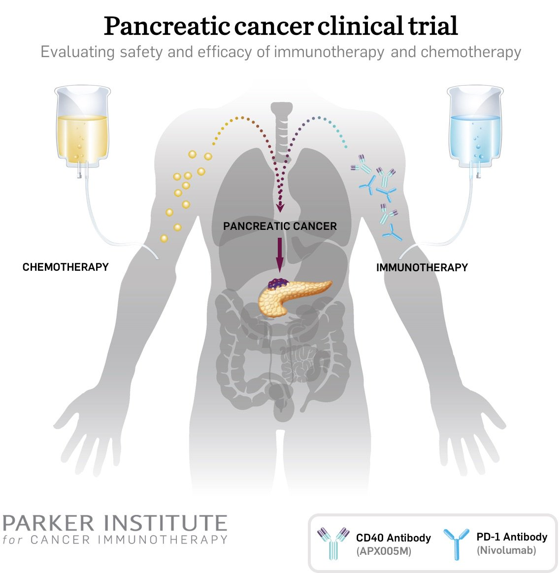 test Twitter Media - @parkerici is taking on one of the toughest cancers https://t.co/ZIXQ58Ekxz   #PancreaticCancer Hear more #cancer #immunotherapy at #PMWC18 https://t.co/8sWbfrWuVI