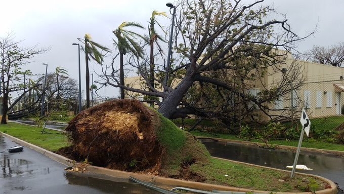 Please pray for Puerto Rico & the rest of the Caribbean!! AGAIN!  - Page 2 DKMQQY5VoAEq6Mf