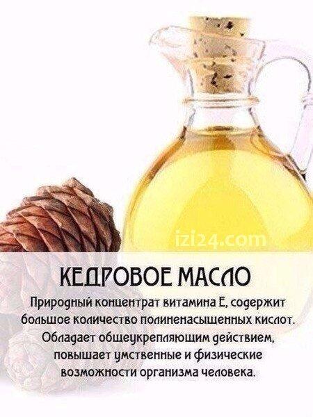 Шпаргалка по русскому языку егэ