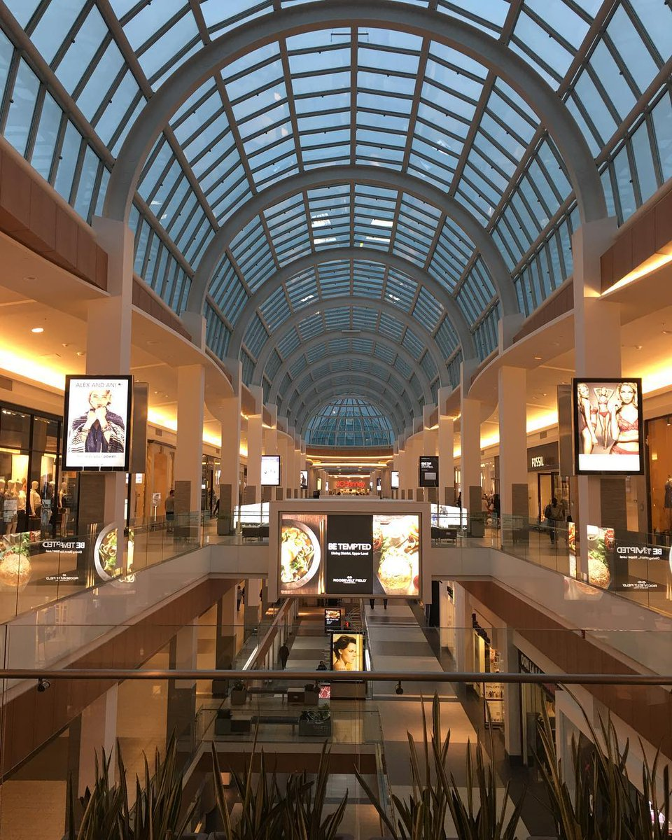 a shopping trip essay People have lesser time and seek entertainment, food and shopping all at one place home about site preserve your 237 words essay on visit to a mall.