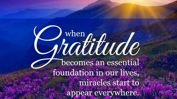 &quot;When gratitude becomes an essential foundation in our lives, miracles start to appear everywhere.&quot; -Emmanuel Dagher #gratitude #mindfulness<br>http://pic.twitter.com/AM8vYkQmUh