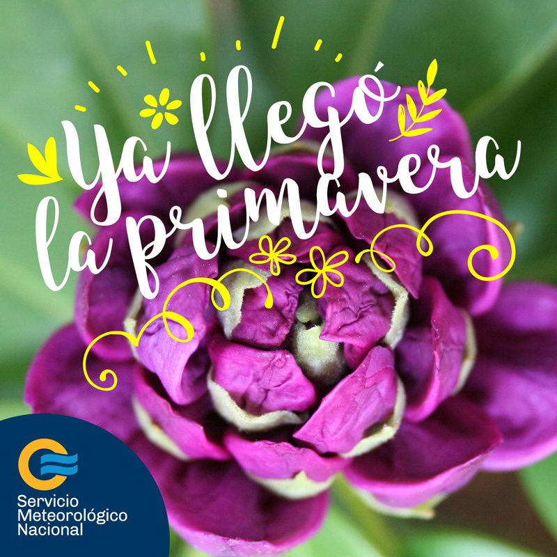 ¡Bienvenida #Primavera 🌸🌼🌺🌷 ! https://t.co/j0887r316G