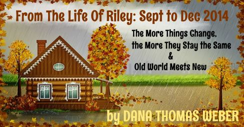From The Life Of Riley: Sept to Dec 2014 https://t.co/lHKGmsLBLh The Life of Riley is a blog written by #article 7