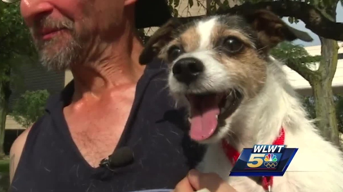 Dog, owner separated after shooting reunite thanks to Cincinnati detective https://t.co/pMTwSfrwcn