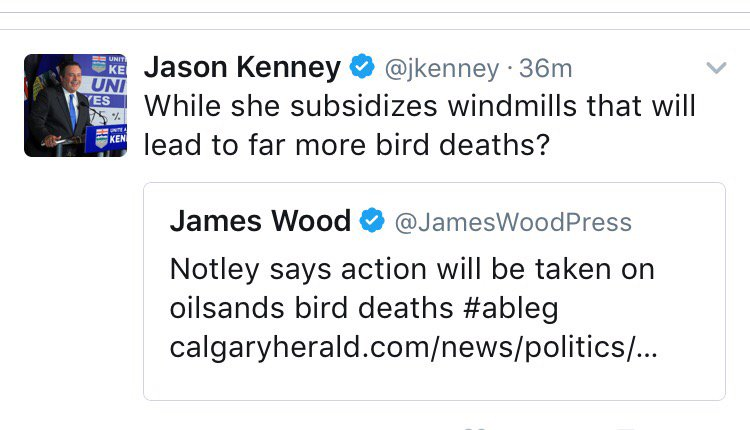 Hey everyone I arrived in Alberta just in time for the politicians to have a fight over who kills the most birds