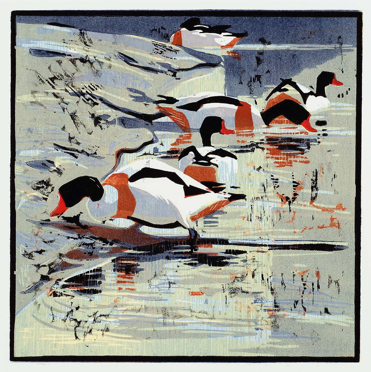 Beautiful cards from #woodcuts by Robert Greenhalf #shelduck #spoonbill #birds #art #greetingcards #robertgreenhalf  https://www. dryredpress.com/collections/pr intmakers-and-illustrators-robert-greenhalf/products/whooper-swans-and-pochards?variant=12533433987 &nbsp; … <br>http://pic.twitter.com/bDiEhLgTj5