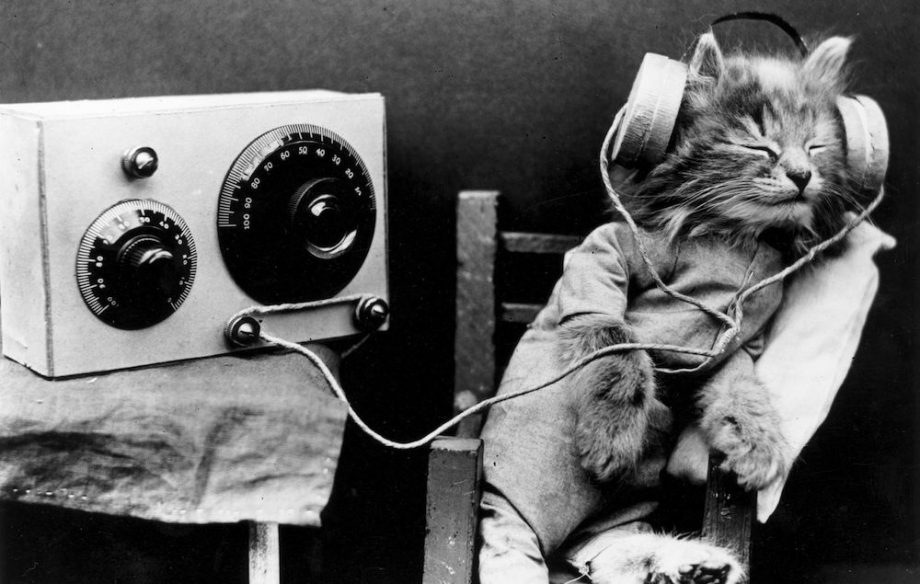 30 songs to help you sleep https://t.co/pP4OZUJZHw https://t.co/yv7FrMkbxV