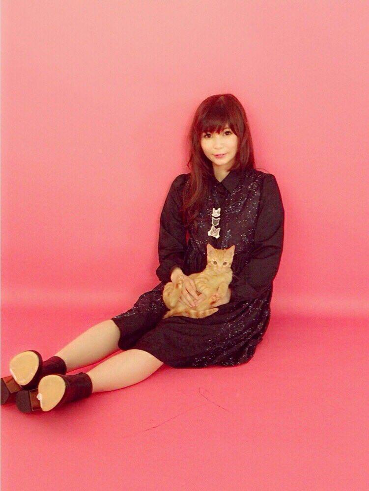 愛猫と中川翔子