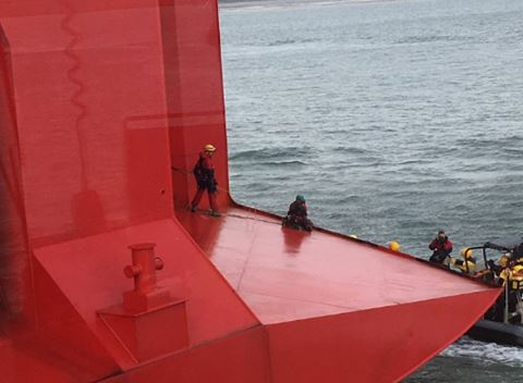 UPDATE: Greenpeace activists board 23,000 tonne ship bringing Volkswag...