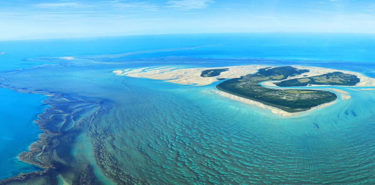 Wow! Over 1200 of the world&#39;s top #scientists are urging #Australian #government to re-think its draft #marine plans  https:// buff.ly/2xo87OQ  &nbsp;  <br>http://pic.twitter.com/iHJDCjN2Xy