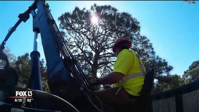 A Logger Drove His Rig Down From Wisconsin To Help Move Trees So