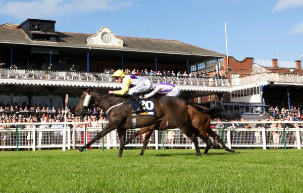 Racing UK Club Day @ayrracecourse  attendee's, your tickets will be valid for tomorrow's meeting. More details >> https://t.co/BnkXpdrRYT