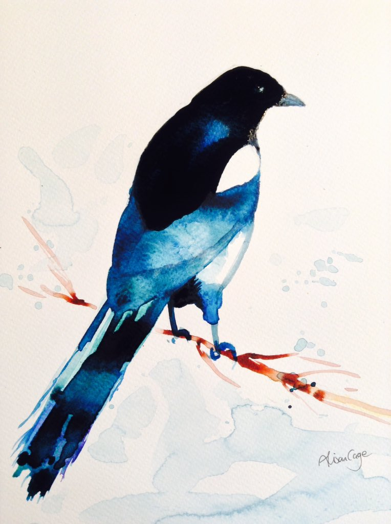 Magpie in watercolour #bird #painting #watercolour #indigo #feathers<br>http://pic.twitter.com/XtYRasZamp
