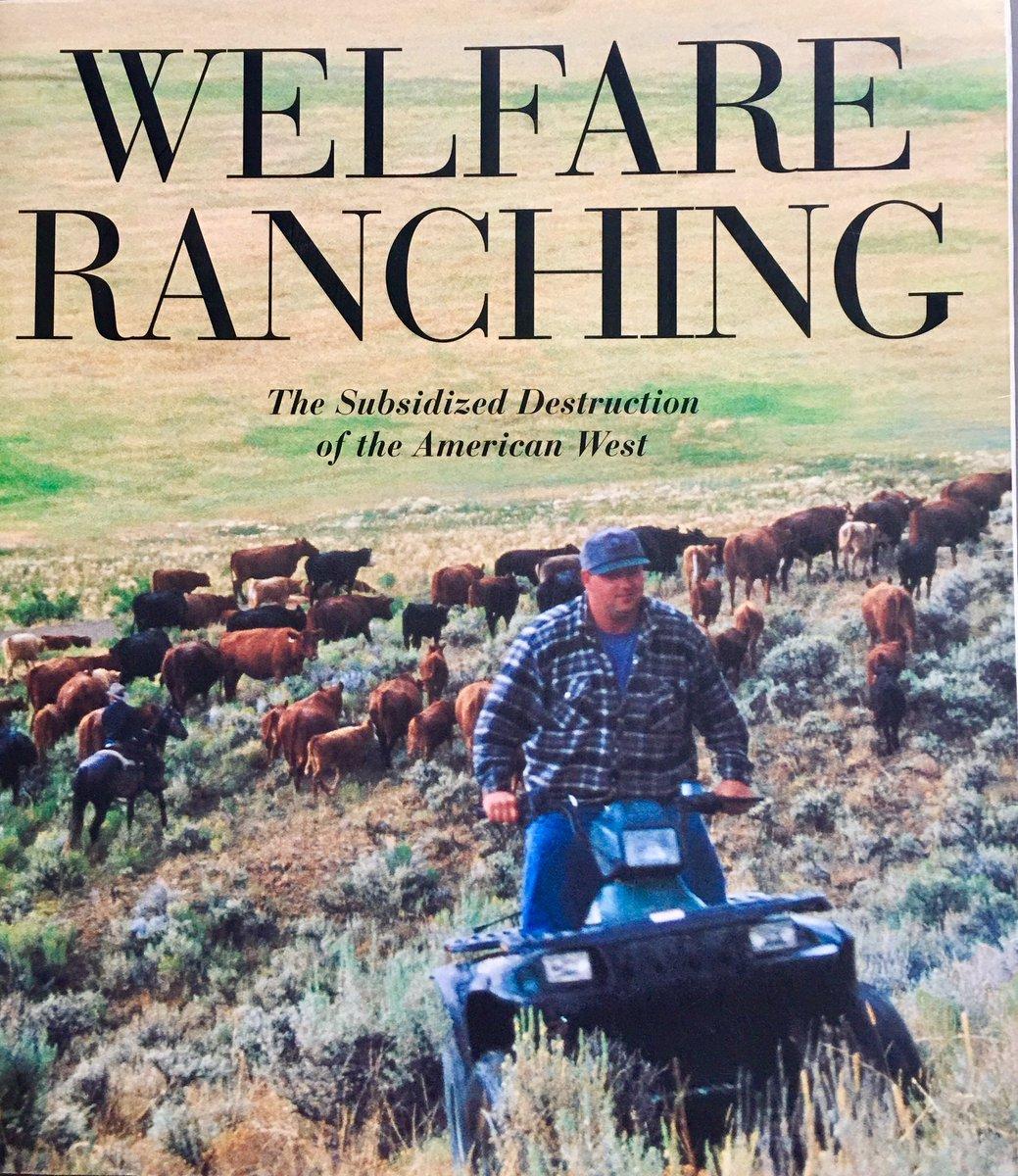 Entitled #welfareranchers r a YUGE burden on our #publiclands, wildlife, #wildhorses. #BuyEmOut. MoooveEmOn! @MartinHeinrich @rollcall @BBC<br>http://pic.twitter.com/BdYb7cBWV5
