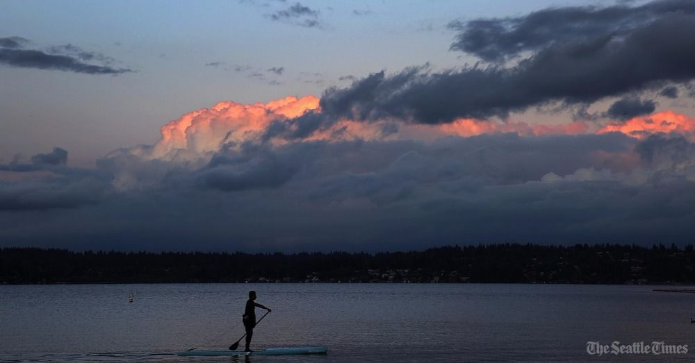 Alex Vaughan goes for a late-summer paddle on Lake Washington. He teaches paddle-boarding year-round at Magnuson. 📷 by @SeaTimesFotoKen