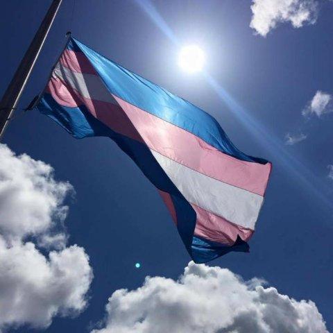 Free transgender online dating
