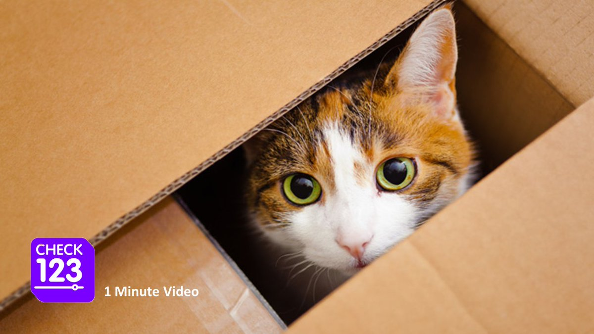 How can a cat be both dead and alive at the same time?? Schrödinger&#39;s cat-  http:// check123.com/videos/2999-sc hrodinger-s-cat &nbsp; …  #science #physics <br>http://pic.twitter.com/JnKZ6UmGZb