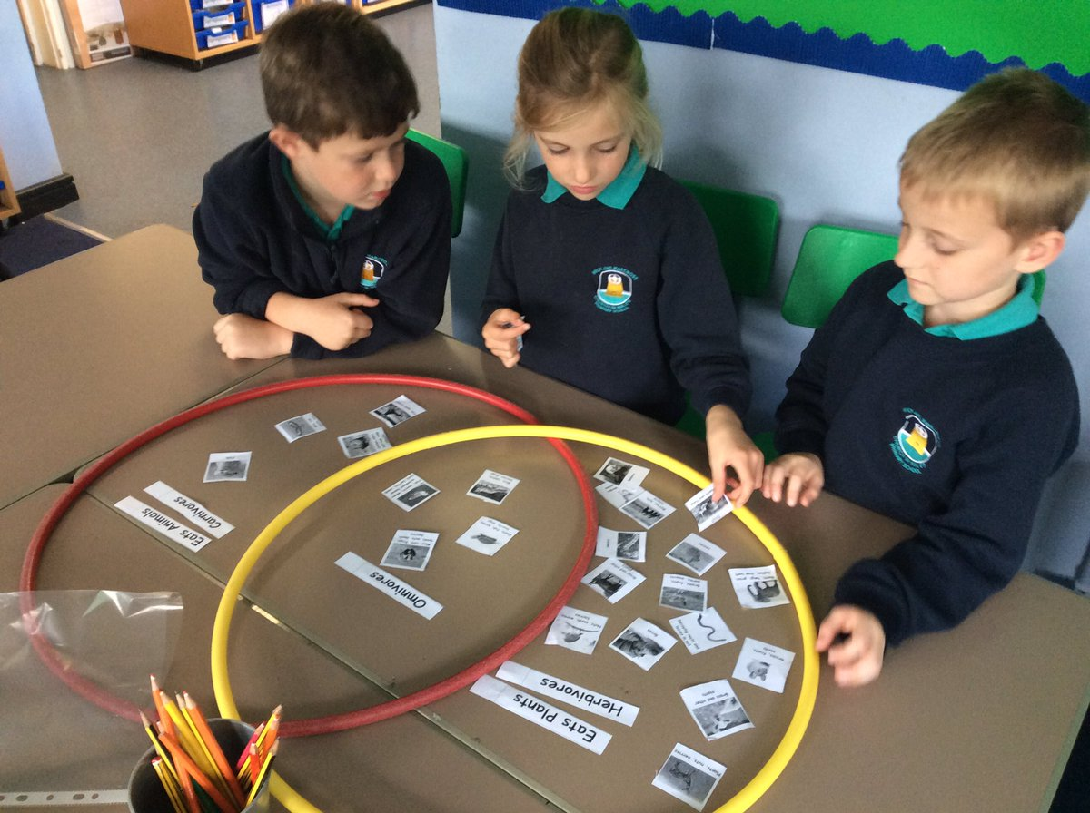 Wick marcross on twitter teilo have been using venn diagrams to wick marcross on twitter teilo have been using venn diagrams to sort carnivores herbivores and omnivores science maths ccuart Choice Image