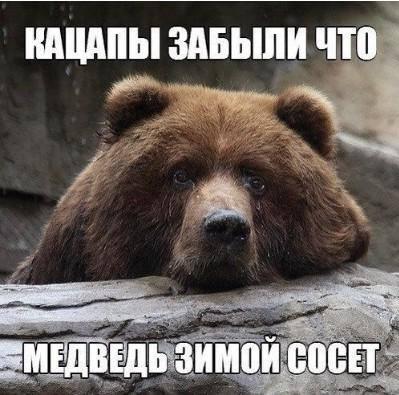 Захарова: Кремль просчитывает шаги в случае возможной поставки Киеву вооружения США - Цензор.НЕТ 6728