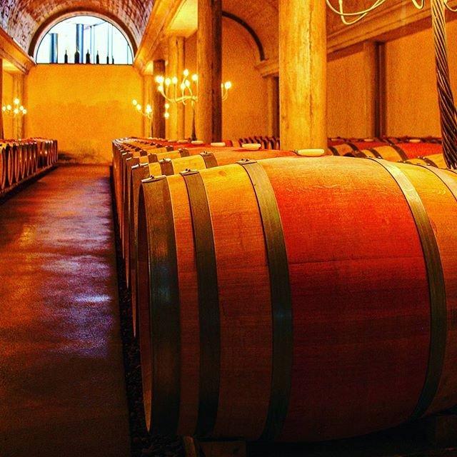 Reposting @emgorio_: #bodega #vino #winetime #winetimes #wines #wine #cellar #cellars #winecellar<br>http://pic.twitter.com/sUQcuUHvdk