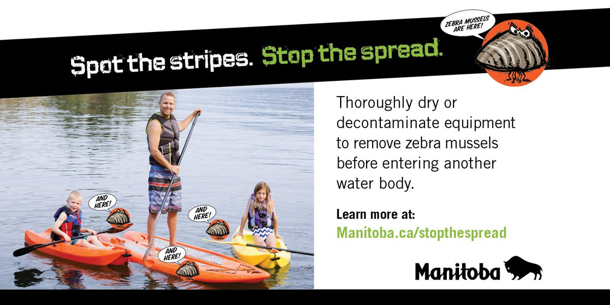 Help protect our lakes and rivers. Don&#39;t transport zebra mussels  http:// bit.ly/2taE7Sj  &nbsp;  . #Stopthespread. <br>http://pic.twitter.com/i03fUSV0Nc