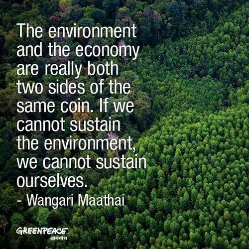 "Protect Nature Quotes: Eco-friendly Tips On Twitter: ""#quote Greenpeace / Wise"