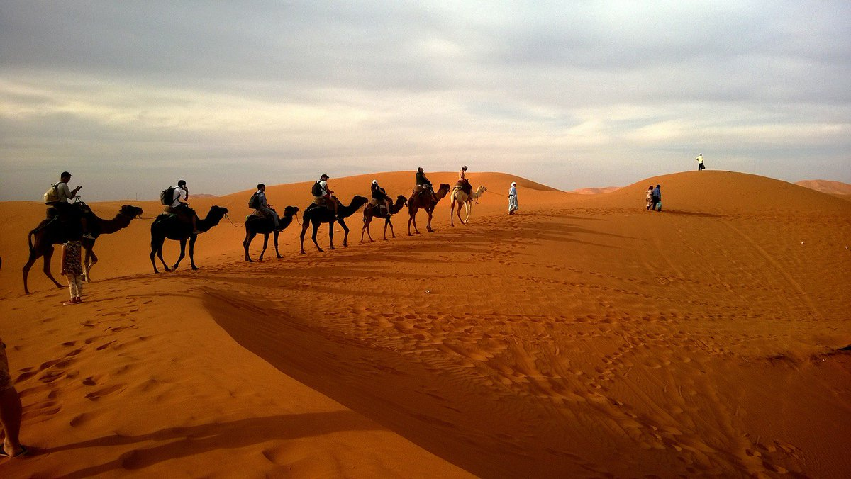 Did you know: #Google hired a camel to create the Street View of a desert #tech #technology #desert #outdoors #Vancouver #Canada #604now<br>http://pic.twitter.com/bzW2Mskwsi