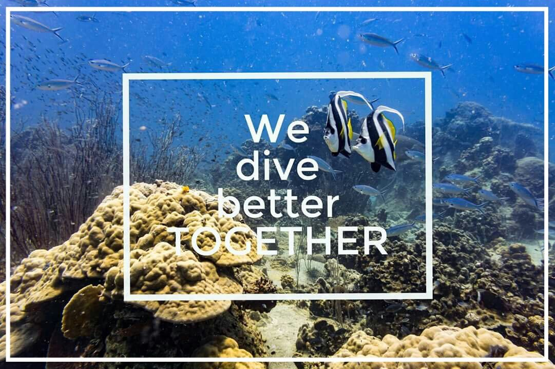 Tag your favorite #scubadiving #buddy <br>http://pic.twitter.com/emXOOHpOcC