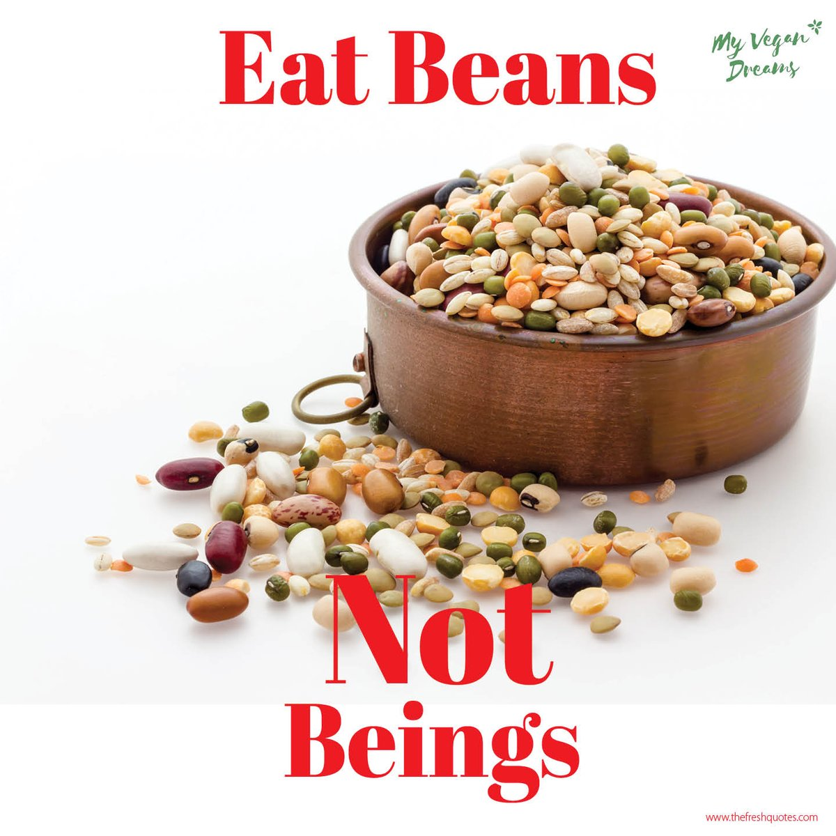 Eat beans, not beings! #vegan <br>http://pic.twitter.com/0C2TgffmzL